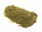 Indian Hen patch - Olive