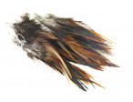 Strung Rooster Saddle Long Feathers - Furnace