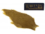 Whiting American Hen Cape - Golden Olive