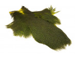Whiting Pearl Hen Neck - Fluo Yellow Chartreuse