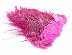 Whiting Rooster saddle - Grizzly Hot Pink