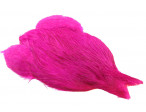 4B Whiting rooster - Magenta