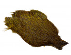 Keough Saltwater Cape - Grizzly Olive