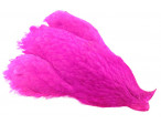 4B Whiting Hen Cape - Magenta